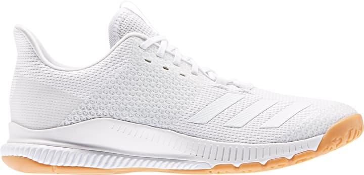 Crazyflight Bounce 3 Chaussure pour le sport en salle  femme Adidas 461722737010 Couleur blanc Taille 37 Photo no. 1
