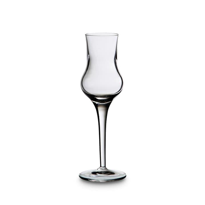 LINEA MICHELANGELO Grappaglas 393003961366 Grösse B: 6.0 cm x T: 6.0 cm x H: 18.0 cm Farbe Transparent Bild Nr. 1
