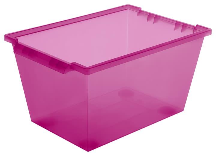 Roller pink, 45L Rotho 603631900000 Grösse L: 59.6 cm x B: 39.6 cm x H: 31.8 cm Farbe Pink Bild Nr. 1
