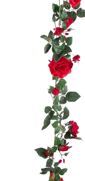 Guirlande de roses artificielles rouge Do it + Garden 659327581115 Colore Rosso Taglio L: 180.0 cm x L: 18.0 cm x A: 8.0 cm N. figura 1