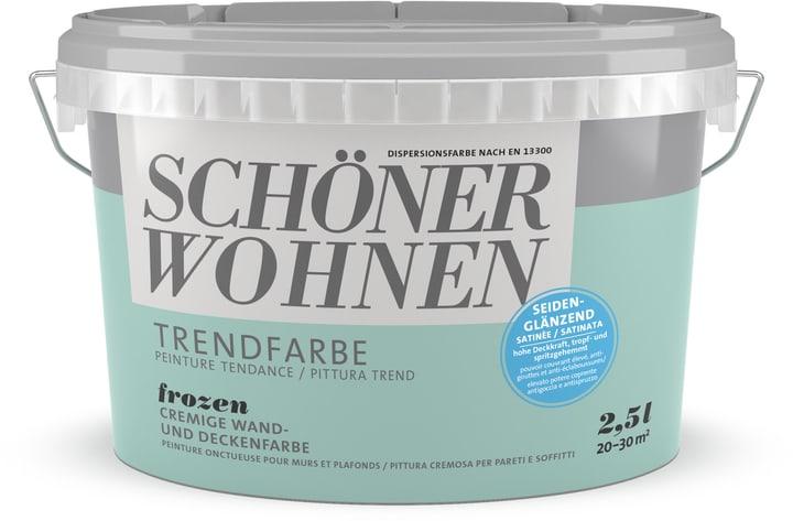 Vernice di tendenza satinata Frozen 2.5 l Schöner Wohnen 660944000000 Colore Frozen Contenuto 2.5 l N. figura 1