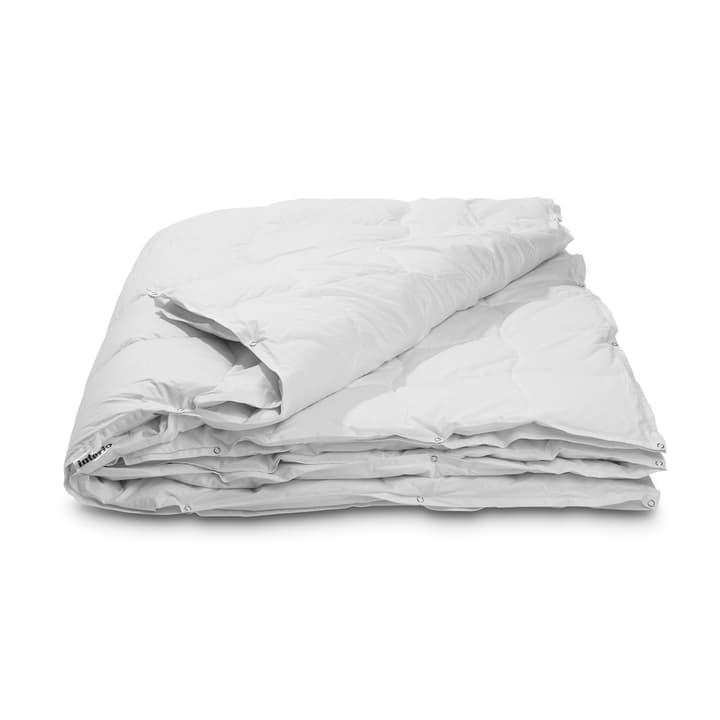 CLASSIC FOUR SEASON Piumino doppio da piume d'oca di qualità superiore con protezione contro gli acari della polvere 376052700000 Colore Bianco Dimensioni L: 210.0 cm x L: 200.0 cm N. figura 1