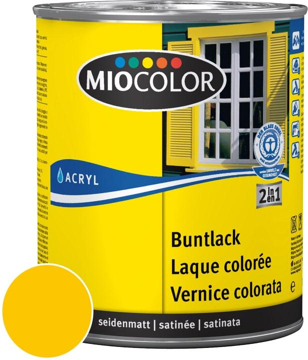 Acryl Vernice colorata satinata Giallo melone 750 ml Miocolor 660554000000 Colore Giallo melone Contenuto 750.0 ml N. figura 1