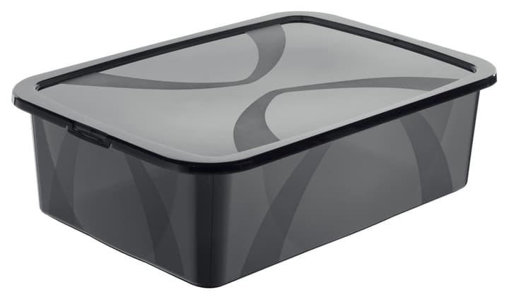 Arco Box 29L, grau Rotho 603630600000 Grösse L: 56.5 cm x B: 38.1 cm x H: 17.1 cm Farbe Grau Bild Nr. 1