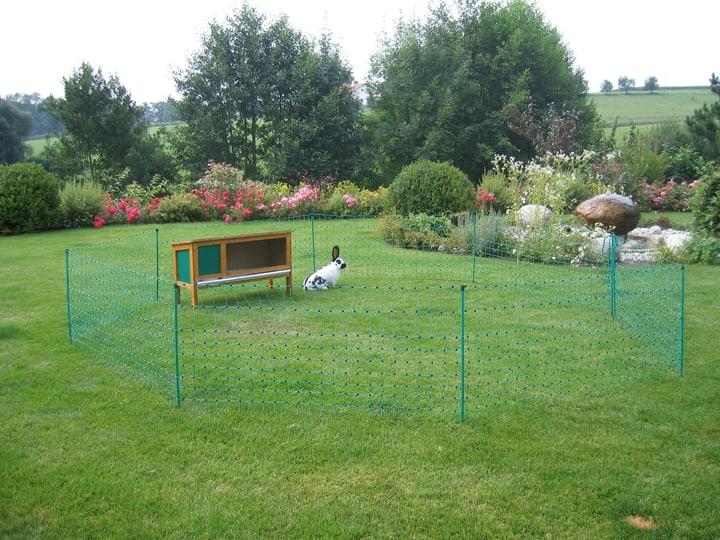 Recinzione recinzione per conigliera 12 m verde 65 cm con picchetti, conduttivo 647268300000 N. figura 1