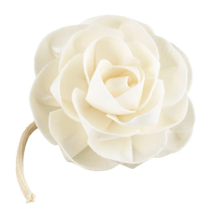 ROSI Fleurs pour parfumées 440647100000 Photo no. 1