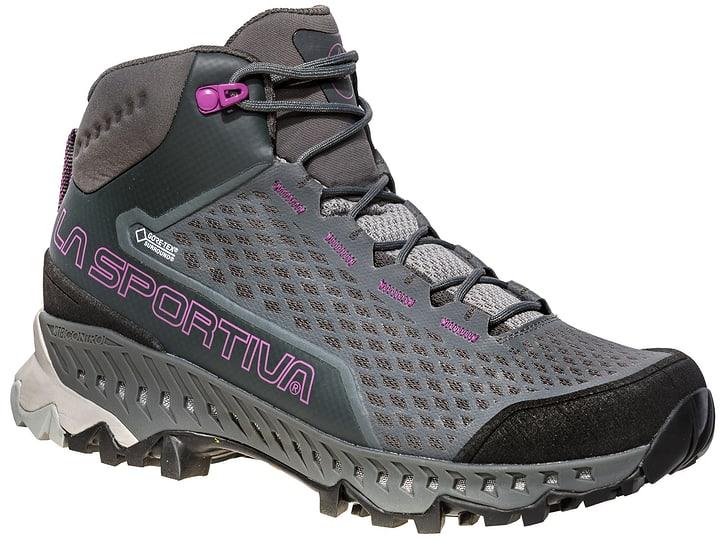 Stream GTX Surround Chaussures de trekking pour femme La Sportiva 499698937080 Couleur gris Taille 37 Photo no. 1
