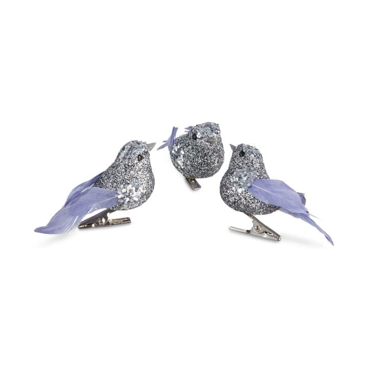 NORA Vogel auf Clip Box 3 Stk. 390277800000 Bild Nr. 1