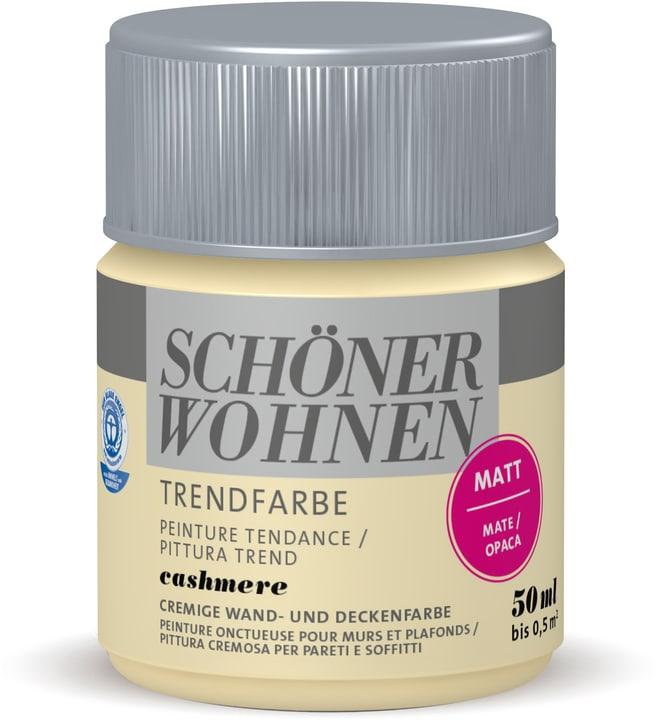 Vernice di tendenza opaca tester Cashmere 50 ml Schöner Wohnen 660910000000 Colore Cashmere Contenuto 50.0 ml N. figura 1