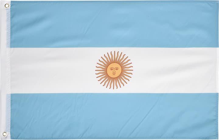 Argentine Drapeau Extend 461935999941 Couleur bleu claire Taille One Size Photo no. 1