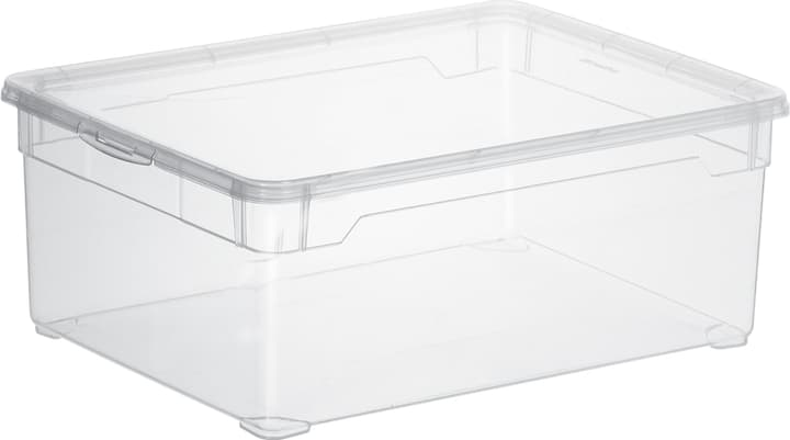 Clear Box Man Shoe Rotho 603333800000 Bild Nr. 1