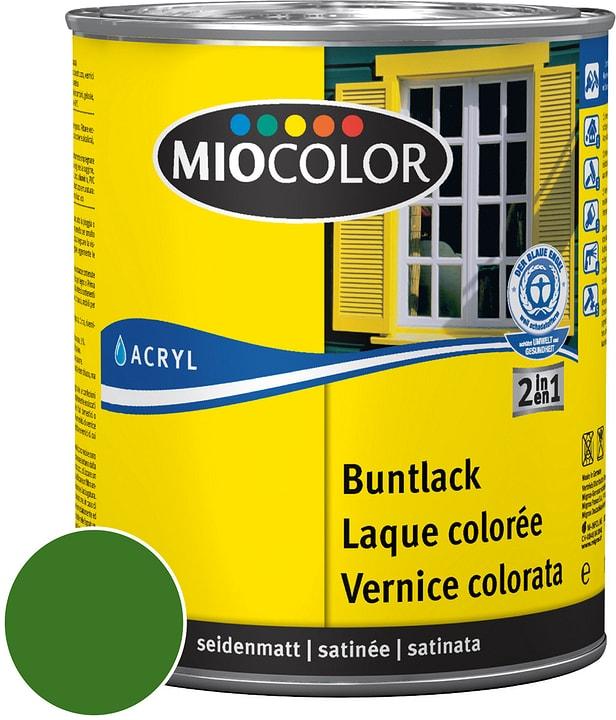 Acryl Vernice colorata satinata Verde foglio 125 ml Miocolor 660553200000 Colore Verde foglio Contenuto 125.0 ml N. figura 1