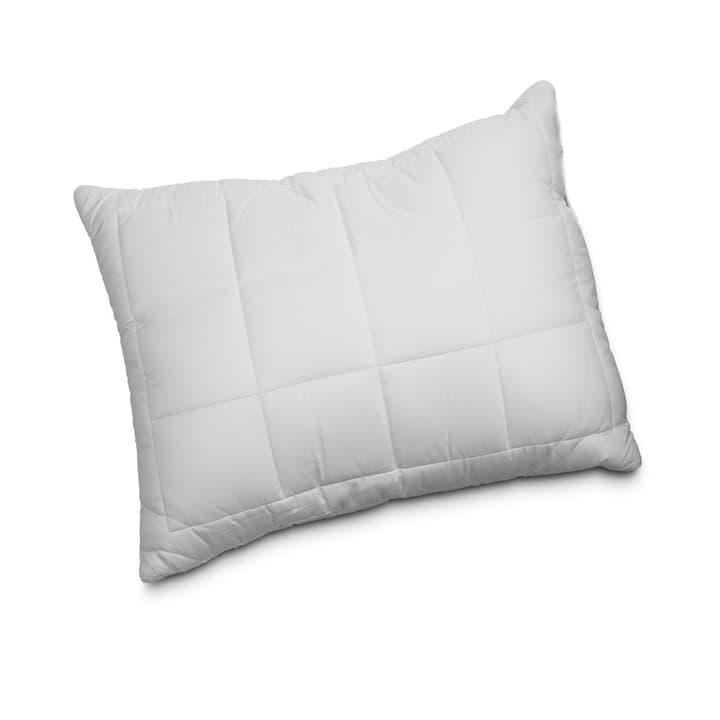 BAMBOO Oreiller en fibre naturelle 376042300000 Dimensions L: 65.0 cm x L: 65.0 cm Couleur Blanc Photo no. 1