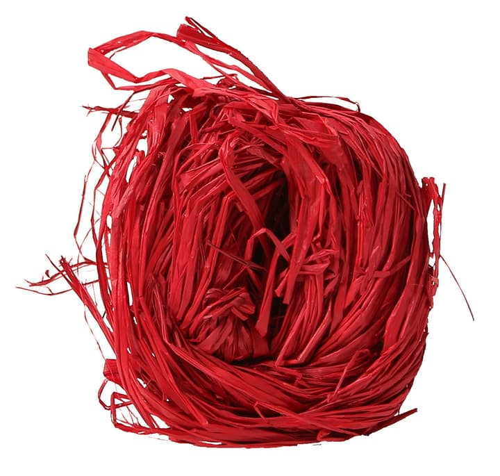 Raffia rosso, 25g Do it + Garden 656546600003 Colore Rosso N. figura 1