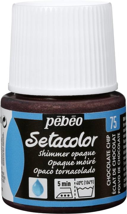 Setacolor chocolat Pebeo 665384800000 Photo no. 1