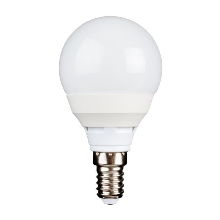 LED P45 E14 5.5W 470 lm M-Classic 421036500000 N. figura 1