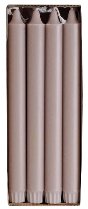 GREEN Stabkerzen 440664502488 Farbe Taupe Grösse H: 24.0 cm Bild Nr. 1
