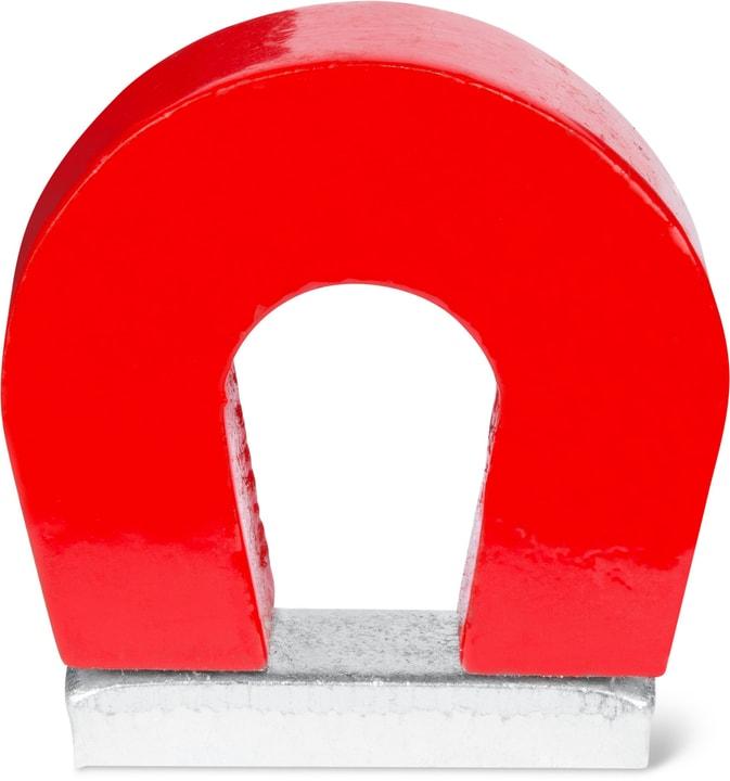 Magnete a ferro di cavallo, 1 pez. Do it + Garden 605133500000 N. figura 1
