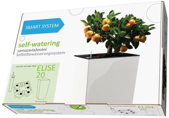 Smart System Elise Plastkon 657558600020 Grösse L: 20.0 cm x B: 20.0 cm x H: 39.0 cm Bild Nr. 1