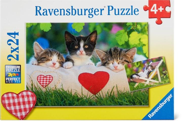 Chatons au repos Ravensburger Puzzle 748976500000 Photo no. 1