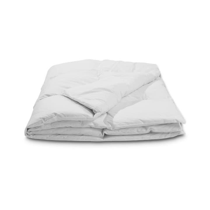 CLASSIC WARM Piumino da piume d'oca di qualità superiore con protezione contro gli acari della polvere 376051400000 Colore Bianco Dimensioni L: 210.0 cm x L: 160.0 cm N. figura 1