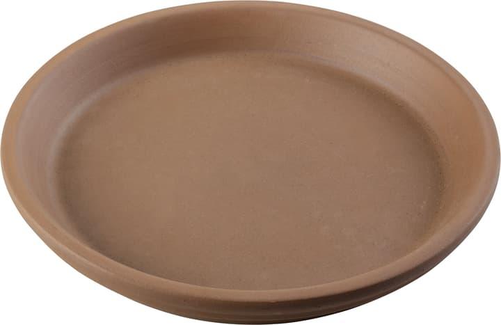 Sottovaso in terracotta Deroma 659531800000 Taglio ø: 23.0 cm x A: 3.0 cm Colore Mocca N. figura 1