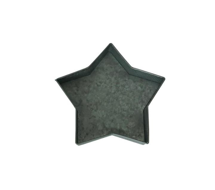 Coupelle métallique Étoile Do it + Garden 657107600001 Couleur Métallisé Taille L: 29.5 cm x L: 27.5 cm x H: 5.0 cm Photo no. 1