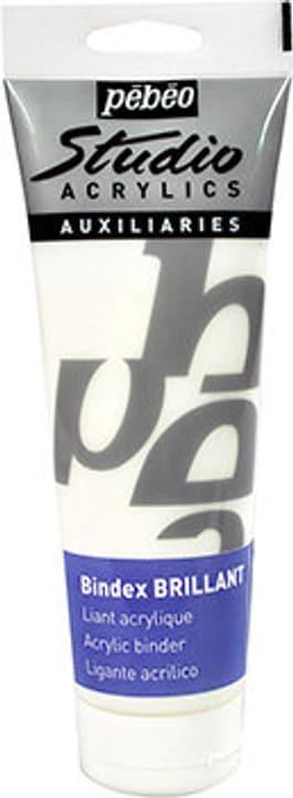 Acrylics Medium brillant Pebeo 663548300000 Bild Nr. 1