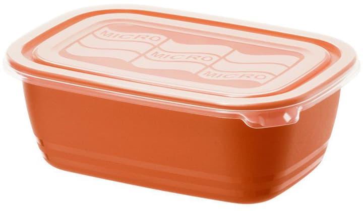 Contenant pour micro-onde Eco Papaya 1 Litre Accessori per microonda Rotho 785300136115 N. figura 1