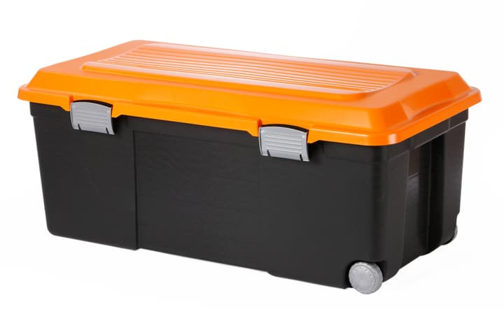 Rollbox CAMPER Rotho 604001200000 Bild Nr. 1