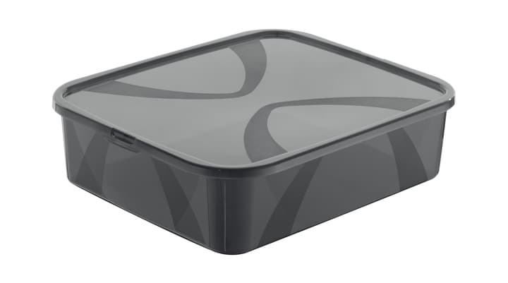 Arco Box 12L, grau Rotho 603630200000 Grösse L: 41.7 cm x B: 35.1 cm x H: 11.2 cm Farbe Grau Bild Nr. 1