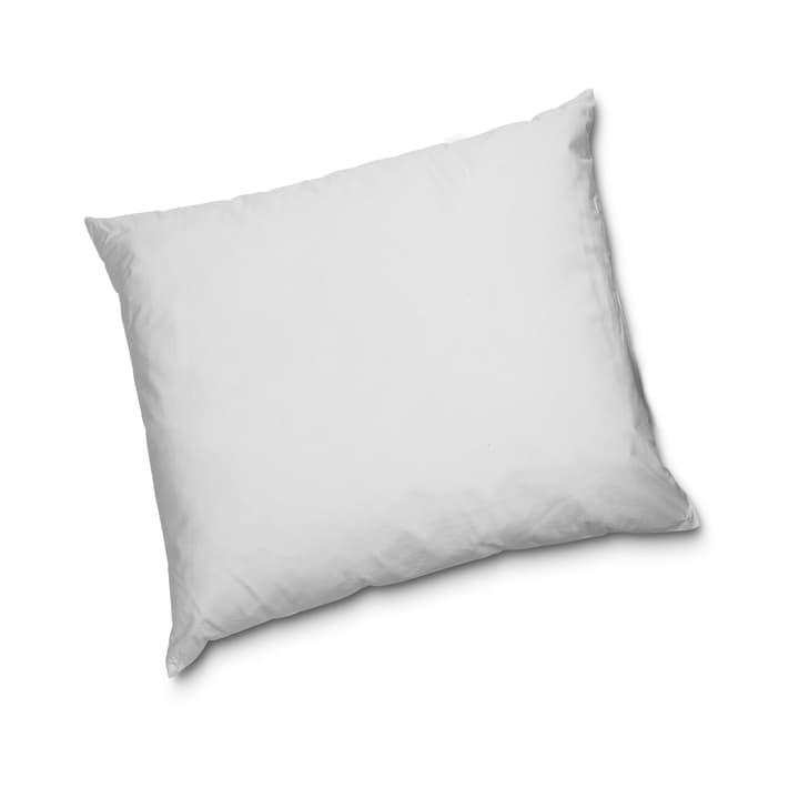 NATURE REGULAR Cuscino di piume 376078610600 Colore Bianco Dimensioni L: 65.0 cm x L: 65.0 cm N. figura 1