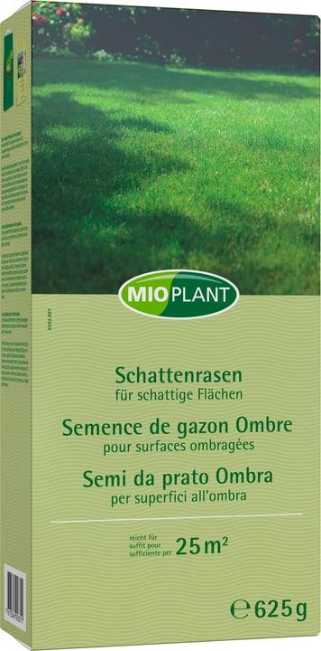 Semi da prato ombra, 25 m2 Mioplant 659289700000 N. figura 1