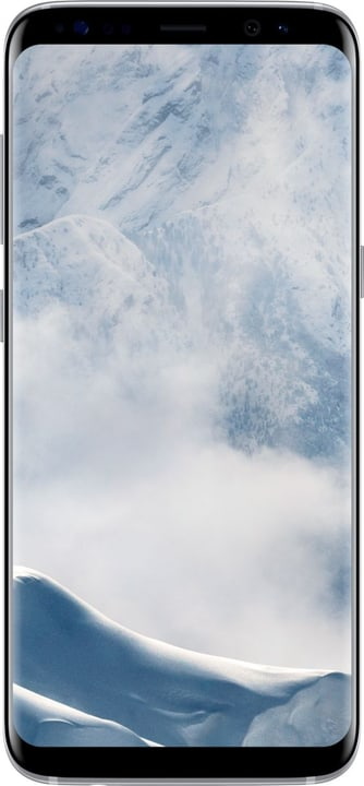 Galaxy S8 argent Smartphone Samsung 794616700000 Photo no. 1