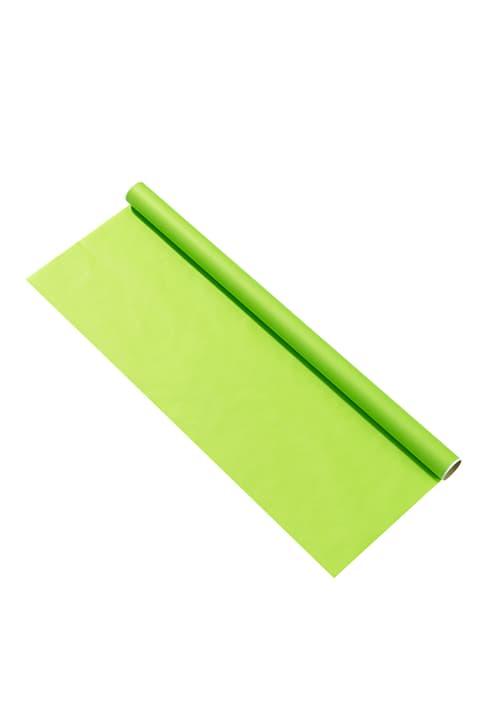 KRAFT Papier-cadeau 440630200560 Couleur Vert clair Dimensions L: 70.0 cm Photo no. 1