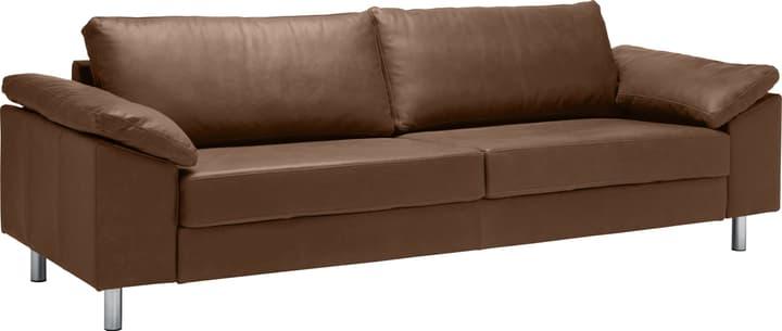 DIENER 3er-Sofa 405738500000 Grösse B: 272.0 cm x T: 92.0 cm x H: 82.0 cm Farbe Braun Bild Nr. 1