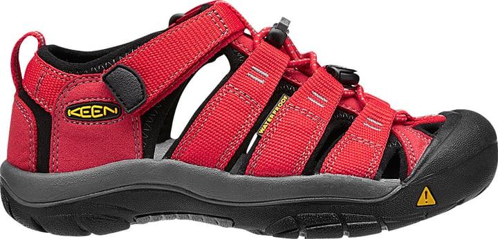 Newport H2 Kinder-Sandale Keen 460655533030 Farbe rot Grösse 33 Bild-Nr. 1