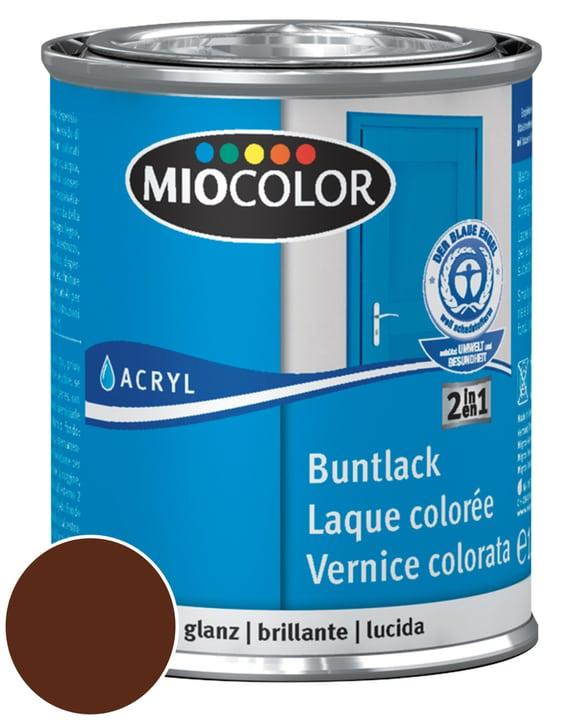 Acryl Vernice colorata lucida Marrone cioccolato 375 ml Miocolor 660549800000 Contenuto 375.0 ml Colore Marrone cioccolato N. figura 1