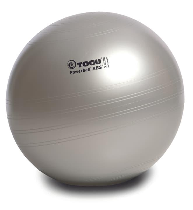Powerball ABS Ø 65 cm Togu 491910200000 Photo no. 1