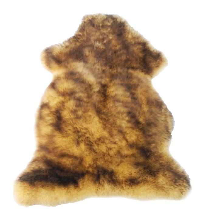 Pelle d'agnello tricolore oro, nera screziata 621315400000 N. figura 1