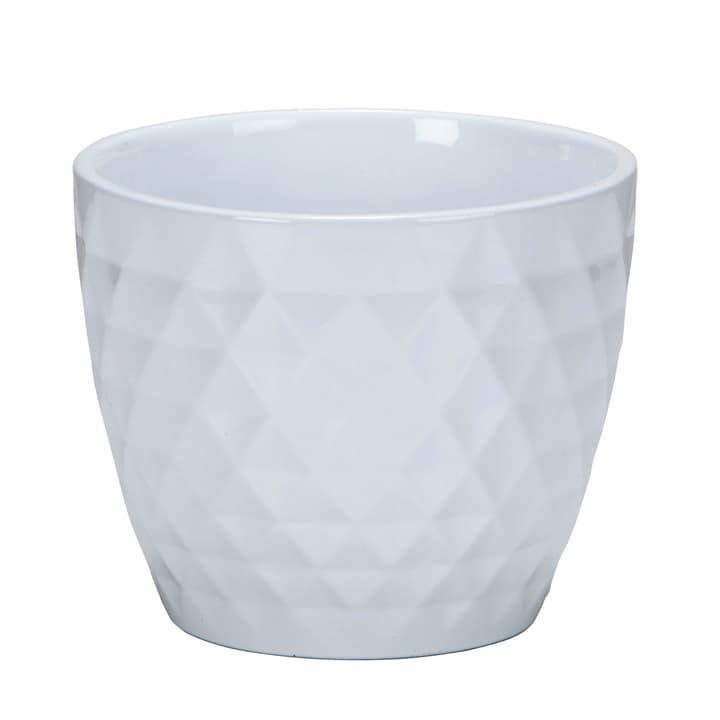 Cache-pot 832 Alaska blanc Scheurich 657557000018 Taille L: 17.8 cm x L: 17.8 cm x H: 14.9 cm Photo no. 1