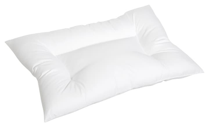 ESTE Oreiller 451736810410 Couleur Blanc Dimensions L: 40.0 cm x H: 60.0 cm Photo no. 1