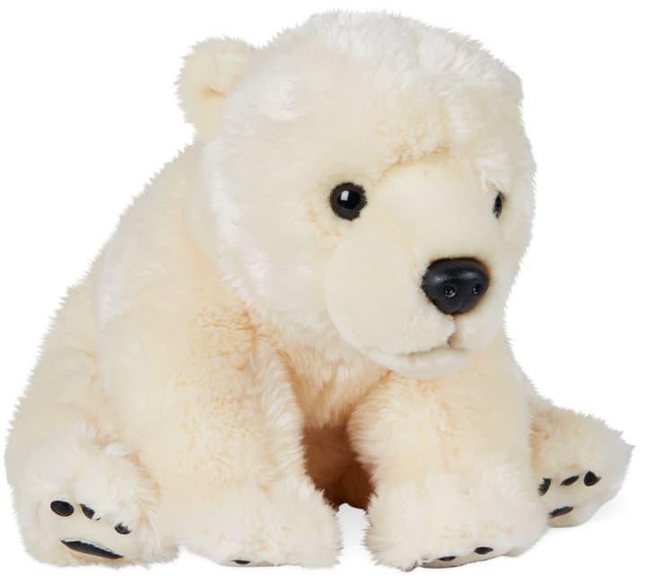 Eisbär 746757000000 Bild Nr. 1