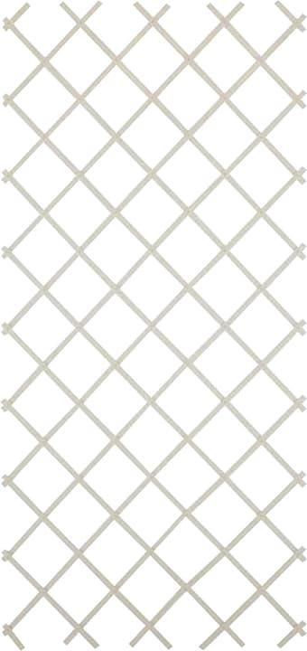 Kunststoff-Scherengitter Do it + Garden 647034000000 Farbe Weiss Grösse B: 30.0 cm x T: 4.0 cm x H: 180.0 cm Bild Nr. 1