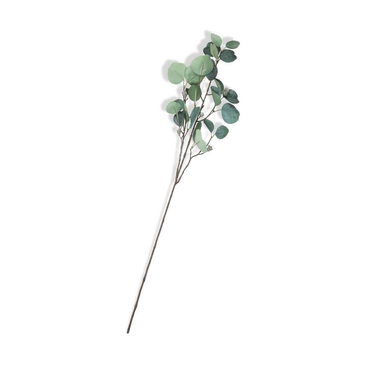 LINA Eukalyptus Zweig 390257200000 Bild Nr. 1