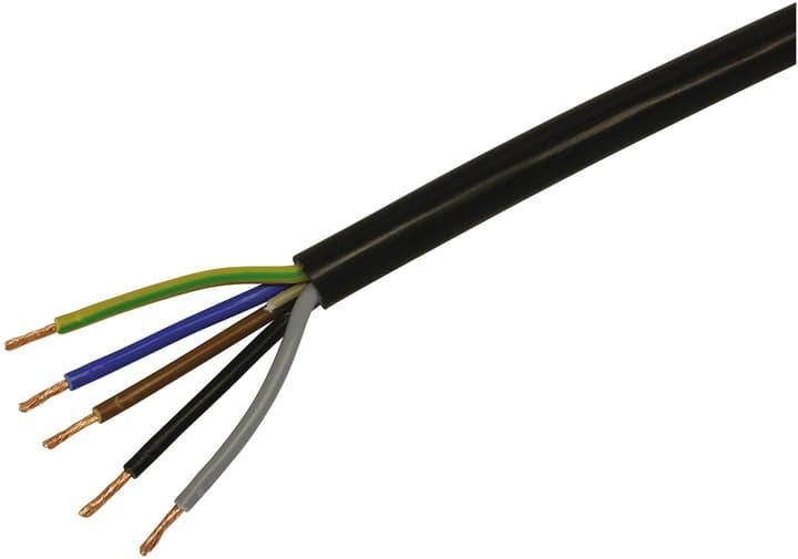 TD Kabel (H05VV-F 5x1.5) Do it + Garden 613135300000 Farbe Schwarz Bild Nr. 1