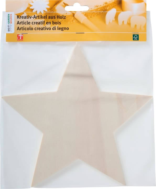 Stella 25cm Legna Creativa 664079300000 N. figura 1