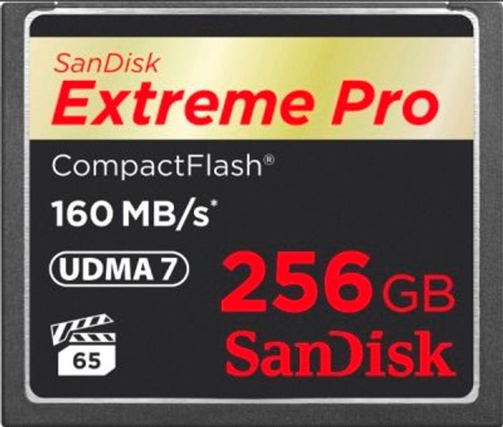 ExtremePro 160MB/s Compact Flash 256Go SanDisk 785300124252 Photo no. 1