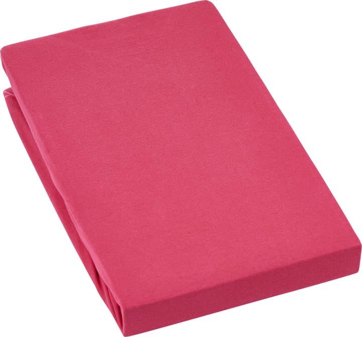EVAN Stretch Jersey-Fixleintuch 451053930530 Farbe Rot Grösse B: 180.0 cm x H: 200.0 cm Bild Nr. 1
