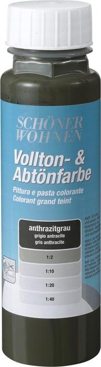 Colorant grand teint Gris anthracite 250 ml Schöner Wohnen 660902400000 Couleur Gris anthracite Contenu 250.0 ml Photo no. 1